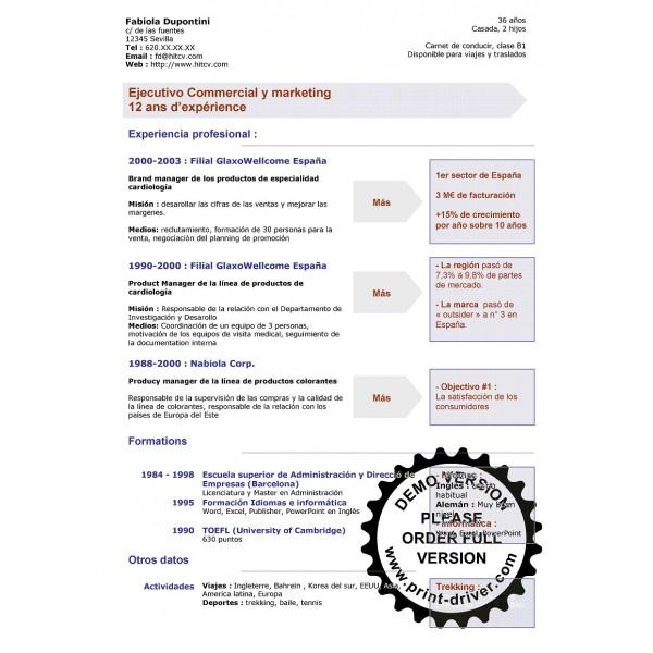 Modelo De Curriculum Vitae Plantillas Y Recursos Para Tu Cv